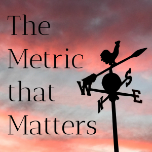 The Metric That Matters